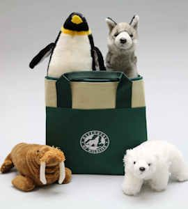 Polar wildlife stuffed animals and cooler bag